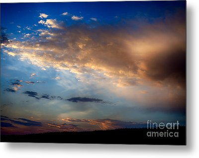 First Morning Light Metal Print by Thomas R Fletcher