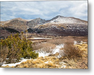 First Snow At Treeline Metal Print by Adam Pender
