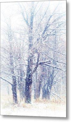 First Snow. Dreamy Wonderland Metal Print by Jenny Rainbow
