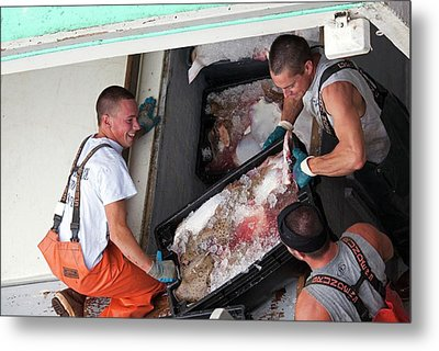 Fishermen Unloading Their Catch Metal Print by Jim West