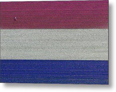 Flag Hyacinths, Lisse Metal Print by Bram van de Biezen