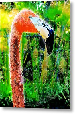 Flamingo Metal Print by David Blank