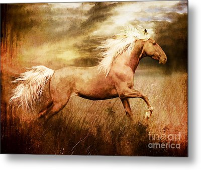Fleet Metal Print by Shanina Conway