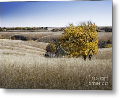Flint Hills Autumn 013 Metal Print by Fred Lassmann