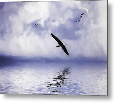 Floating On Air Metal Print by Diane Schuster