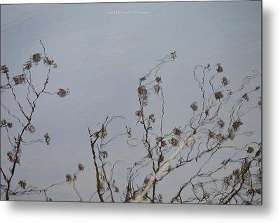 Floral Reflection Metal Print by Sonali Gangane