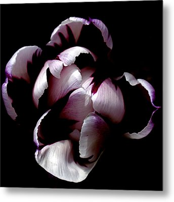 Floral Symmetry Metal Print by Rona Black