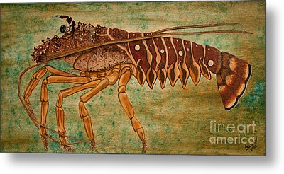 Florida Spiny Lobster Metal Print by Susan Cliett