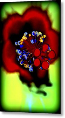 Flower With'in Metal Print by Kathy Sampson