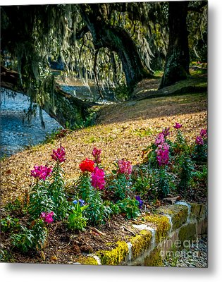 Flowered Pathway Metal Print by Optical Playground By MP Ray