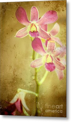 Flowers Metal Print by Sophie Vigneault