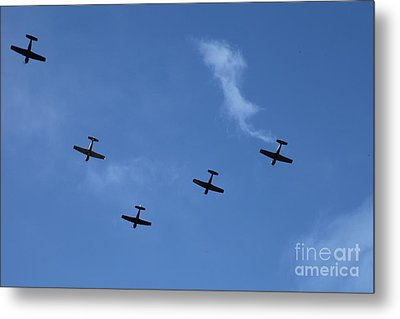 Fly Bye Metal Print by Graham Foulkes