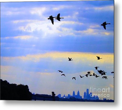 Fly Like The Wind Metal Print by Robyn King