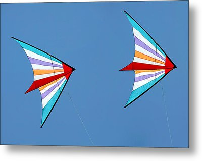 Flying Kites Into The Wind Metal Print by Christine Till