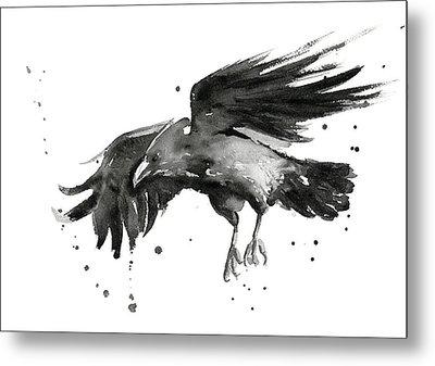 Flying Raven Watercolor Metal Print by Olga Shvartsur