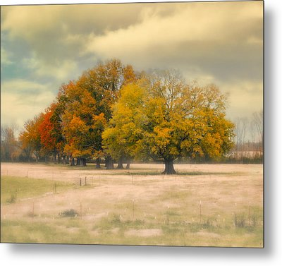 Foggy Autumn Morning - Fall Landscape Metal Print by Jai Johnson