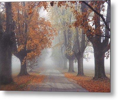 Foggy Driveway Metal Print by Wendell Thompson
