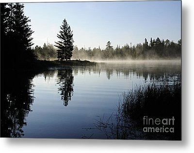 Foggy Morning Metal Print by Larry Ricker