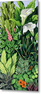 Foliage Metal Print by Catherine Abel