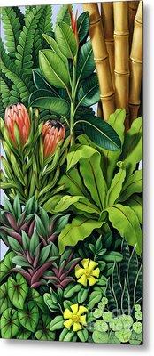 Foliage IIi Metal Print by Catherine Abel