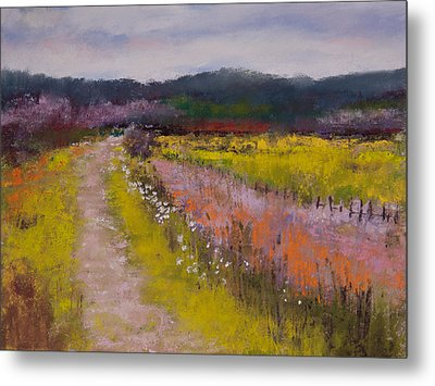 Follow The Daisies Metal Print by David Patterson
