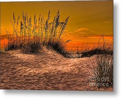 Footprints In The Sand Metal Print by Marvin Spates