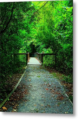 Forest Entrance Metal Print by Ester  Rogers