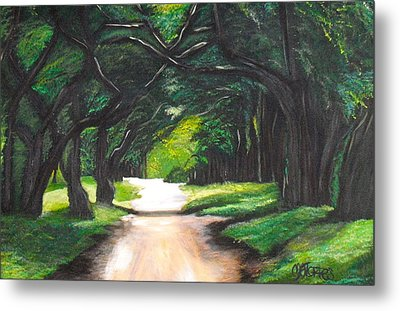 Forest Full Of Trees Metal Print by Melissa Torres
