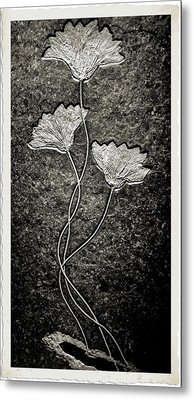 Fossilized Flowers Metal Print by Dan Sproul