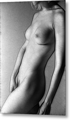 Fractal Nude 649d Metal Print by Timothy Bischoff