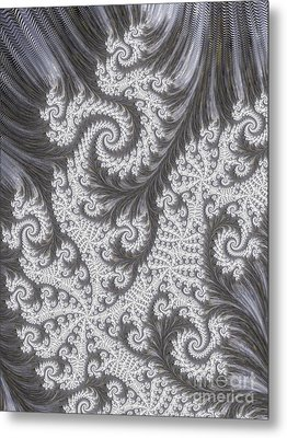 Franciful Frost  Metal Print by Heidi Smith