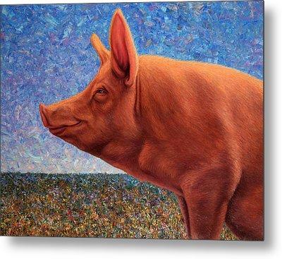 Free Range Pig Metal Print by James W Johnson