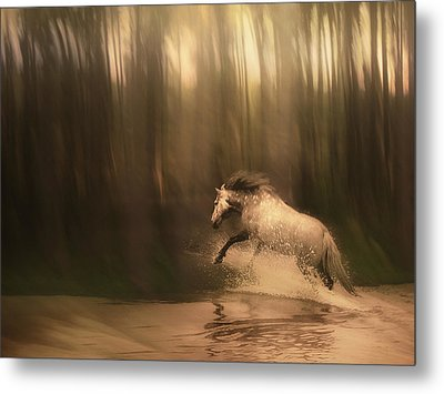 Freedom Of The Forest Metal Print by Jennifer Woodward