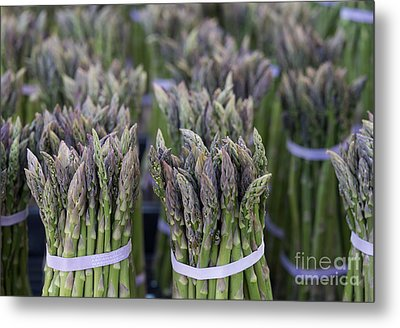 Fresh Asparagus Metal Print by Mike  Dawson