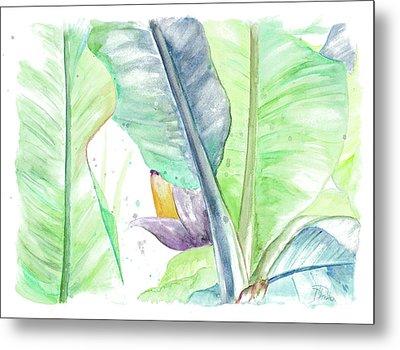 Fresh Banana Plantain Metal Print by Patricia Pinto