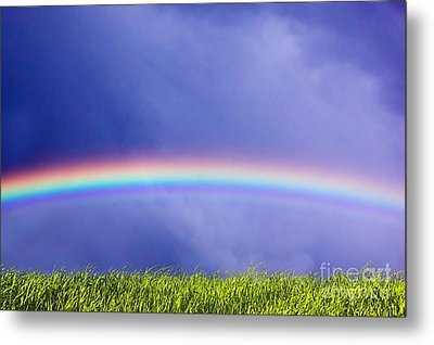 Fresh Grass And Sky With Rainbow Metal Print by Michal Bednarek