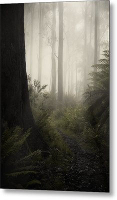 From Darkness Metal Print by Amy Weiss