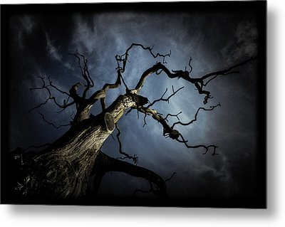 From The Darkness It Came Metal Print by Chris Fletcher