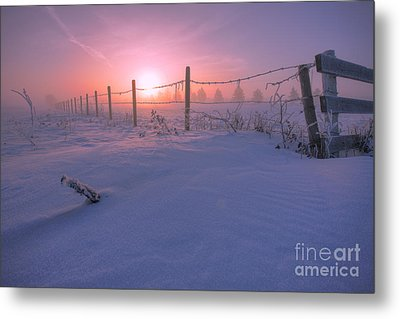 Frost And Fenceline Metal Print by Dan Jurak