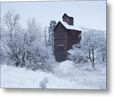 Frozen In Time Metal Print by Darren  White