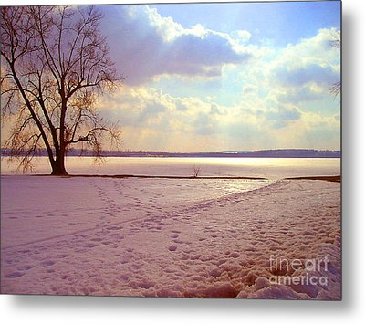 Frozen Lake II Metal Print by Silvie Kendall