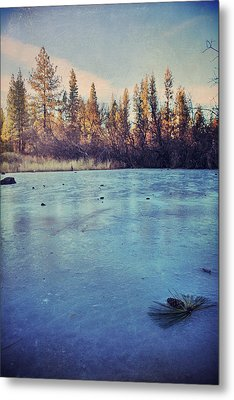 Frozen Metal Print by Laurie Search