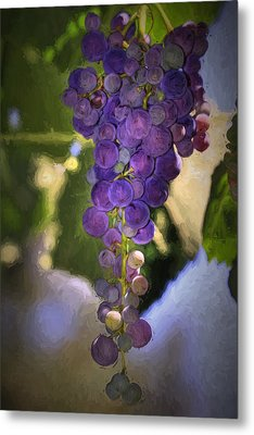 Fruit Of The Vine Metal Print by Donna Kennedy