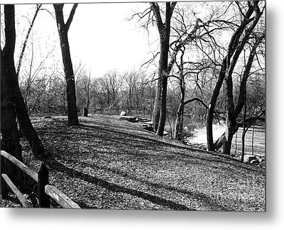 Fullersburg Woods Landscape In Black And White Metal Print by ImagesAsArt Photos And Graphics