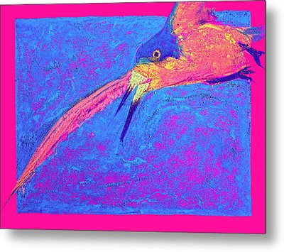 Funky Black Skimmer Bird In Flight Art Prints Metal Print by Sue Jacobi
