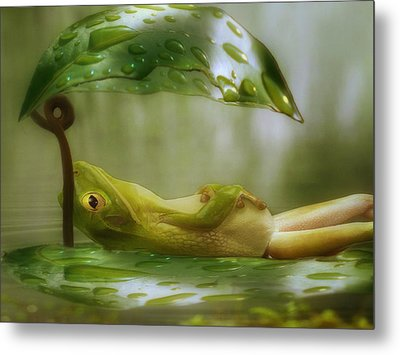 Funny Happy Frog Metal Print by Jack Zulli