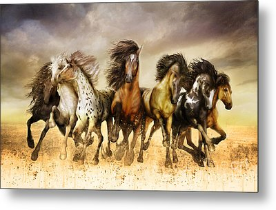 Galloping Horses Full Color Metal Print by Shanina Conway