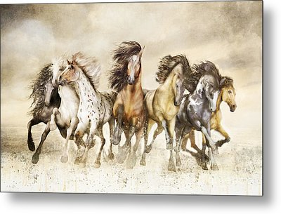 Galloping Horses Magnificent Seven Metal Print by Shanina Conway