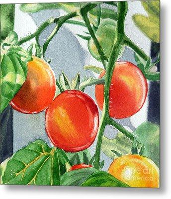 Garden Cherry Tomatoes  Metal Print by Irina Sztukowski