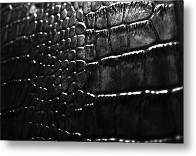Gator Metal Print by Anthony Cummigs